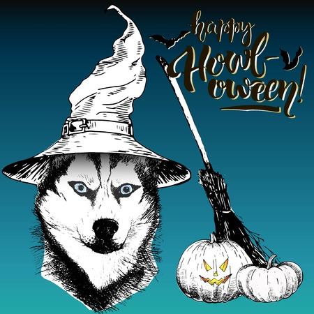 siberian: Vector greeting card for Halloween. Siberian husky dog wearing the witch hat. Broom and pumpkin lanterns. Decorated with lettering Happy Howl-oween and bats. Hand drawn.