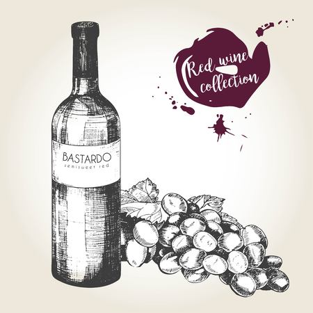 raceme: Vector set of red wine in engraved vintage style. Wine bottle, glass and grape. Isolated on grunge background. Deorated with lettering and blots. Use for restaurant, cafe, store, food, menu, design.