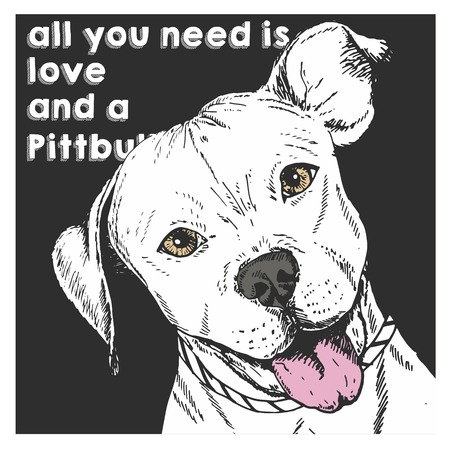 Vector close up portrait of english pit bull, isolated on black square background. All you need is love and a dog. Hand drawn domestic dog illustration. Sketched engraved funny illustration.