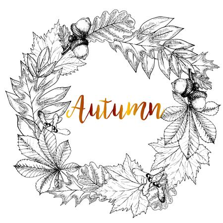 Vector hand drawn wreath of autumn leaves. Oak, maple, chestnut, acorn, seeds. Vintage engraved style. Use for Greeting card, discount template, store shoping design Imagens - 63834657