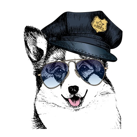 on duty: Vector close up portrait of police dog. Welsh corgi pembroke wearing the peak cap and sunglasses. Hand drawn domestic pet dog illustration. Isolated on white background.