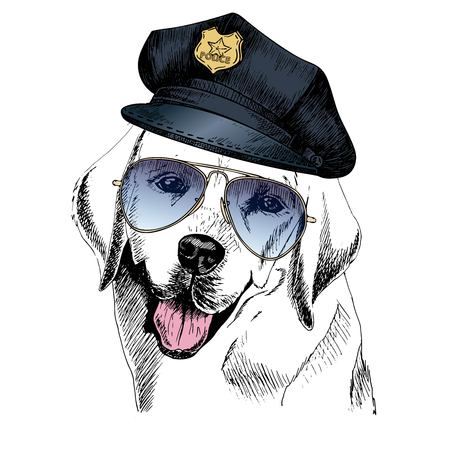 police dog: Vector close up portrait of police dog. Labrador retriever wearing the peak cap and sunglasses. Hand drawn domestic pet dog illustration. Isolated on white background.