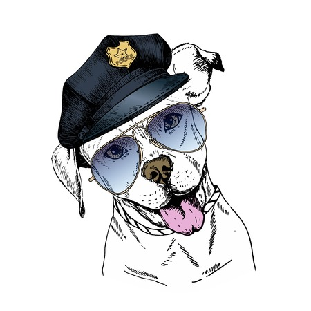 police dog: Vector close up portrait of police dog. English pitbull wearing the peak cap and sunglasses. Hand drawn domestic pet dog illustration. Isolated on white background.