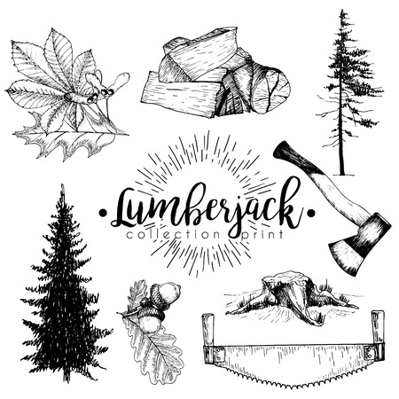 vectro: Vectro set of timber print collection. Stamp, axe, pine trees, firewoods, saw, leaves and acorns. Hand drawn vintage style. Trendy hipster lumberjack illustration.