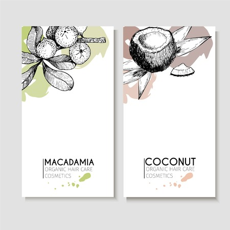 Vector set of hair care ingredients. Organic hand drawn elements. Flyers with macadamia and coconut. Use for cosmetic package, shop, store, products, identity, branding, skin, hair care Vettoriali