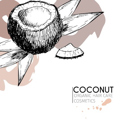 Vector set of hair care ingredients. Organic hand drawn elements. Coconut and leaves. Use for cosmetic package, shop, store, products, spa salon, wellnes program, procedure, skin, hair care Banco de Imagens - 63834595