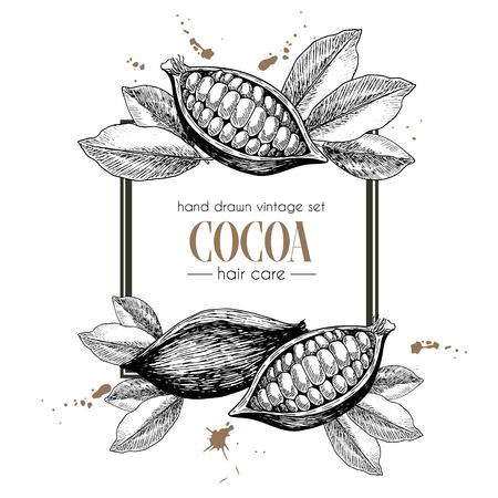 cacao: Vector set of hair care ingredients. Organic hand drawn elements. Square border composition. Cocoa beans. Use for cosmetic package, shop, store, products, identity, branding, skin, hair care
