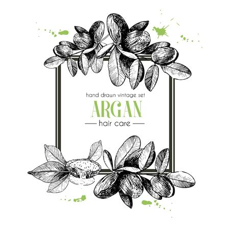 Vector set of hair care ingredients. Organic hand drawn elements. Square border composition. Aran branch. Use for cosmetic package, shop, store, products, identity, branding, skin, hair care