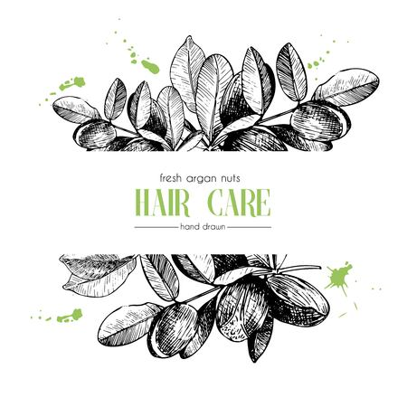 Vector set of hair care ingredients. Organic hand drawn elements. Template for Argan branch. Use for cosmetic package, shop, store, products, spa salon, wellnes program, procedure, skin, hair care Illustration
