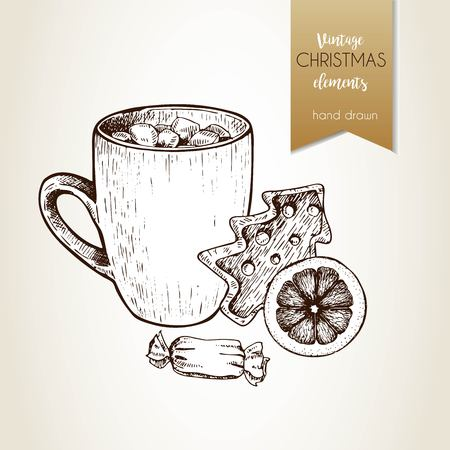 Vector hand drawn illustartion of cocoa cup, gingerbread cookie, orange slice  and candy. Vintage engraved style.  Christmas decoration.  Use for seasonal greeting, party decor, holiday advertisement. Illustration