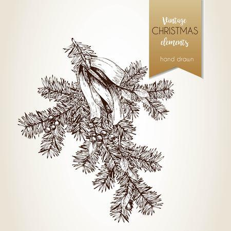 松の木の枝のベクトルの手描きイラストは、弓とホリーと果実を装飾されています。刻まれたヴィンテージスタイルのアート。クリスマス装飾。季  イラスト・ベクター素材