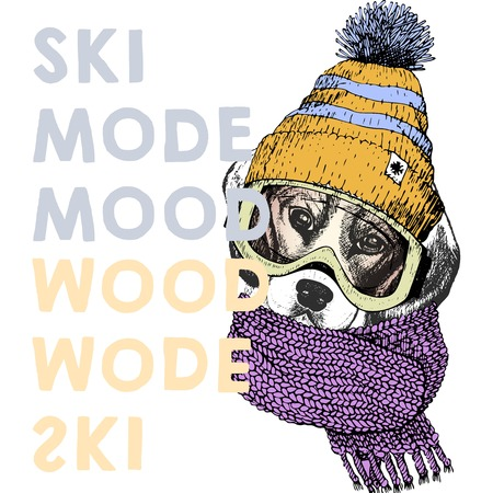 beanie: Vector poster with close up portrait of beagle dog.Ski mode mood. Puppy wearing beanie, scarf, goggles. Hand drawn illustration. Use for sport shop, resort, ski-rent promotion, print and other design.