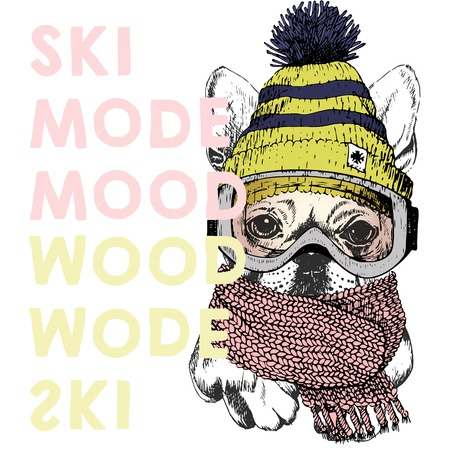 beanie: Vector poster with close up portrait of beagle dog.Ski mode mood. Puppy wearing beanie, scarf and snow goggles. Hand drawn illustration. Use for sport shop, resort, ski-rent promotion, print, design.