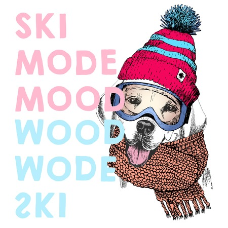beanie: Vector poster with close up portrait of labrador retriever dog.Ski mode mood. Puppy beanie, scarf and snow goggles.Hand drawn illustration.Use for sport shop, resort, ski-rent promotion, print design.