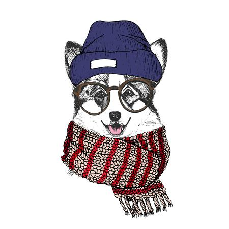 pembroke welsh corgi: Vector hand drawn portrait of cozy winter dog. Welsh corgi wearing knitted scarf, beanine andhipster glasses. Winter cozy seasonal print. Sketched poster. Use for flyer, poster, clothing prints. Illustration