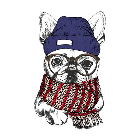 Vector hand drawn portrait of cozy winter dog. French bulldog wearing knitted scarf, beanine andhipster glasses. Winter cozy seasonal print. Sketched poster. Use for flyer, poster, clothing prints.