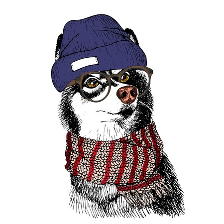 Vector hand drawn portrait of cozy winter dog. Siberian husky wearing knitted scarf, beanine andhipster glasses. Winter cozy seasonal print. Sketched poster. Use for flyer, poster, clothing prints.
