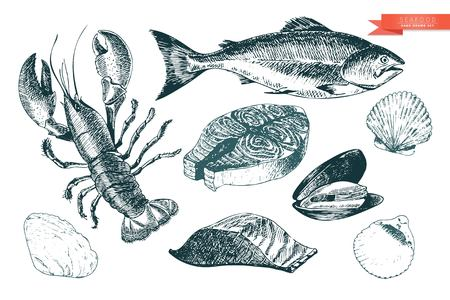 salmon fillet: Vector hand drawn set of seafood icons. Lobster, salmon, fillet and clams. Engraved art. Delicious food menu objects. Use for resaurant, meal, market, store, menu, party decoration, other design