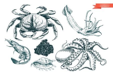 Vector Hand Drawn ensemble d'icônes de fruits de mer. Crabe, crevettes, calmars, poulpes, caviar et huîtres. art Gravé. Délicieux objets de menu alimentaire. Utilisation pour resaurant, repas, marché, magasin, menu, décoration de partie autre conception