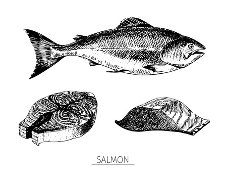 red fish: Vector hand drawn set of seafood icons. Isolated salmon. Engraved art. Delicious marine food menu sketched objects. Use for resaurant, meal, market, store, menu, party decoration, other design
