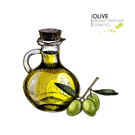 Vector set of hair care ingredients. Organic hand drawn colored elements. Olive branch and oil bottle. cosmetic package, shop, store, products, spa salon, wellness program, procedure, skin, beauty Illustration