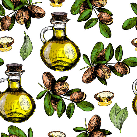 Vector seamless pattern of argan branches, oil bottle and nut. Hand drawn colored engraved art. Healthy beauty hair nutrition. fashion care products, branding, identity, advertisement, promotion. Vettoriali
