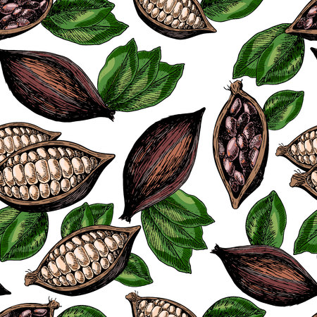 Vector seamless pattern of cocoa beans and leaves. Hand drawn colored engraved art. Healthy beauty hair nutrition. design your fashion care products, branding, identity, advertisement, promotion.
