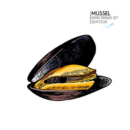 ベクトルは手シーフード アイコンの描画セットです。孤立したムール貝。刻まれた色の芸術。おいしい海洋食品メニュー オブジェクト。麟、食事、  イラスト・ベクター素材