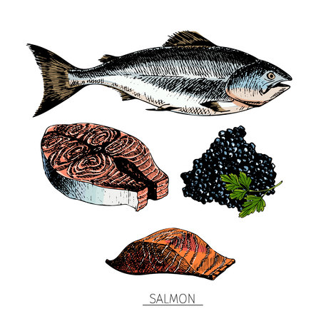 salmon fillet: Vector hand drawn set of seafood icons. salmon fillet, slice and caviar. Engraved colored art. Delicious food sketched objects. for resaurant, meal, market, store, menu, party decoration, other design