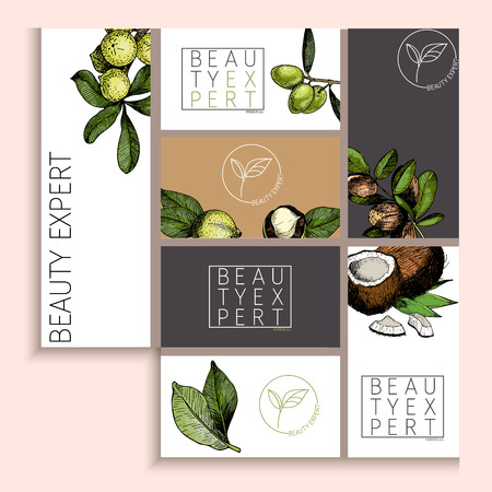 Vector set of cosmetic branding. Packaging design for beauty brand identity. Natural care products. Hand drawn macadamia, olive, argan, cococnut. Colored elements. Use for shop or product advertisement.