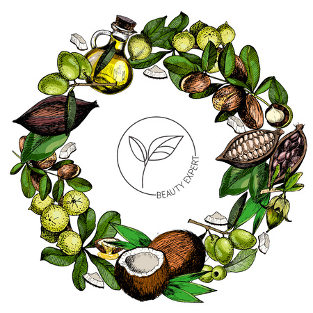 Set of hair care ingredients. Organic hand drawn colored elements.Macadamia, argan, coconut, cocoa, olive, jojoba wreath.cosmetic package, shop, store, products spa salon wellness program