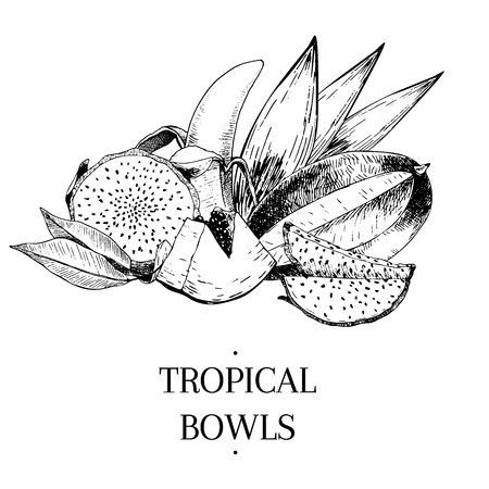 Vecotr hand drawn exotic fruits. Engraved smoothie bowl ingredients. Tropical sweet food. Pitaya, papaya, banana, mango.