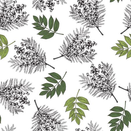 Vector hand drawn blossom seamless pattern. Engraved botanical art. Vintage illustration. Mimosa, acacia spring and summer blossoms. Botanic garden. Use for wedding card party invitation Illustration