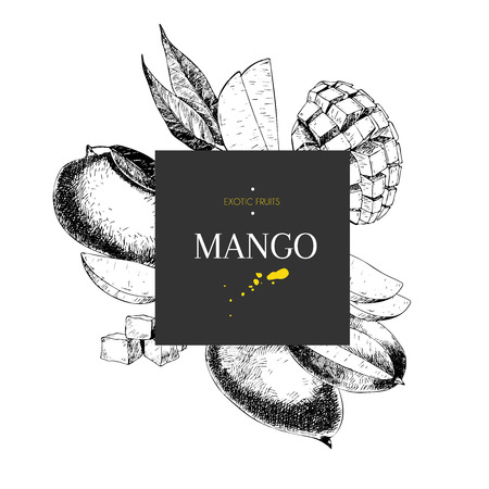 mango slice: Vecotr hand drawn smoothie bowls poster. Exotic engraved fruits. Square border composition.