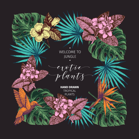 Vecotr hand drawn tropical plants poster. Exotic engraved leaves and flowers. Square border. Monstera, livistona palm leaves, birdof paradise, plumeria, hibiscus. Use for exotic wedding, partty