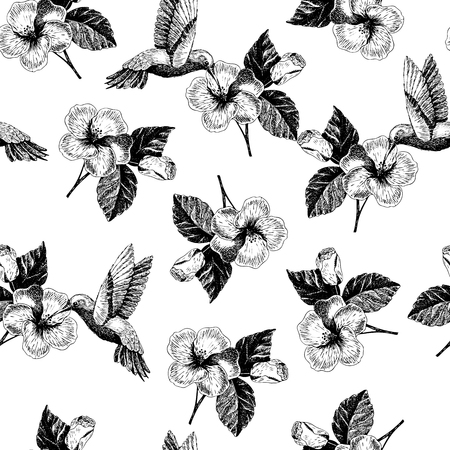 Vecotr hand drawn seamless pattern. tropical plants. Exotic engraved leaves and flowers. Isoalated on white. hibiscus, hummingbird. Use for exotic beach, wedding, partty