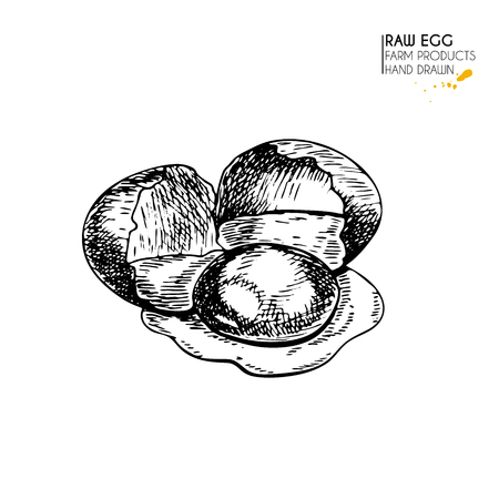 breackfast: Vector hand drawn set of farm products. Isolated hen scrumbled egg. Engraved art. Organic sketched farming meal. Use for restaurant, breackfast menu, grocery, market, store, party