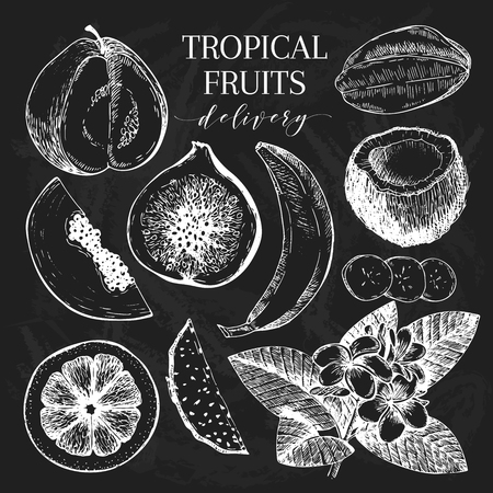 delievery: Vector hand drawn exotic fruits. Chalkboard style engraved smoothie bowl ingredients. Tropical sweet food delivery. Guava, fig, coconut, orange, banana, papaya, pitaya. exotic restaurant food party