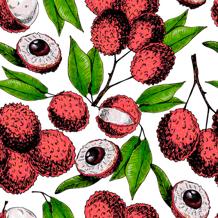 Vector hand drawn seamless pattern of isolated lychee. Engraved colored art. Delicious tropical vegetarian fruits. Use for restaurant, meal, market, store, menu, party decoration, smoothie bowls