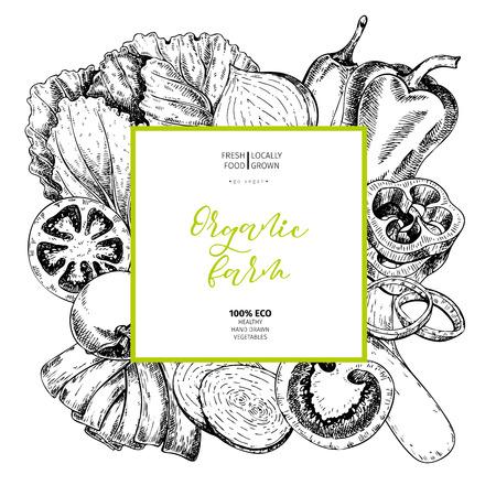 ベクトル描画ファーム野菜を手します。正方形のボーダーの組成物。トマト、タマネギ、キャベツ、ピーマン、ネギ。刻まれたアート。有機スケッ  イラスト・ベクター素材