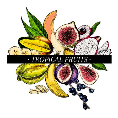 Vector affiche de bols smoothie dessinés à la main. Fruits gravés exotiques. Icônes de couleur. Banane, mangue, papaye, pitaya, açai, litchi, figue, carambole pitahaya Utilisation pour la fête exotique du restaurant