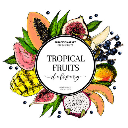 Vector hand drawn smoothie bowls poster. Exotic engraved fruits. Colored icons in round bodrer composition. Banana, mango, papaya, pitaya, fig, acai, guava, pitahaya. for exotic restaurant food party Vettoriali