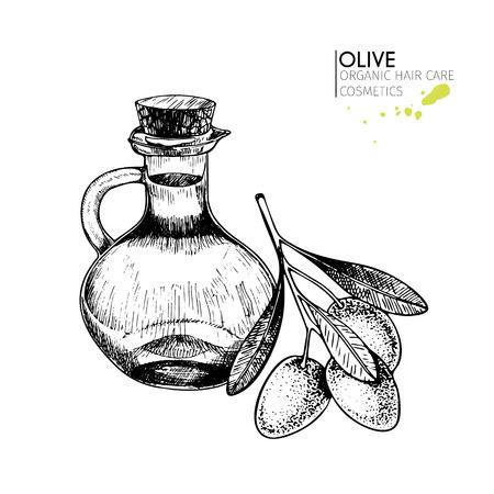 Vector conjunto de ingredientes para el cuidado del cabello. Elementos orgánicos dibujados a mano. Hortalizas del mercado agrícola. Ramo de olivo y botella. Uso para el paquete cosmético, tienda, almacén, productos, salón del balneario, programa de wellnes, piel. Foto de archivo - 82071026
