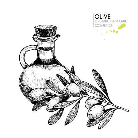 A Vector set of hair care ingredients. Organic hand drawn elements. Farm market vegetables. Olive branch and bottle. Use for cosmetic package, shop, store, products,  spa salon, wellnes program, skin.