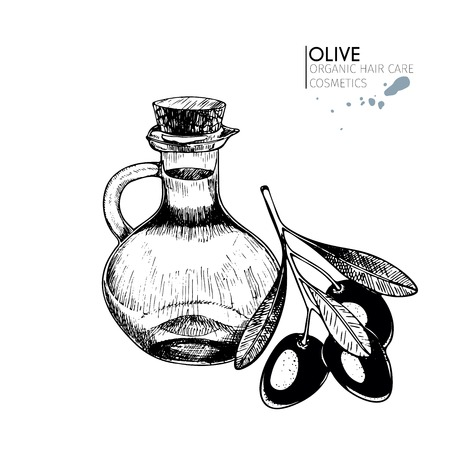 A Vector set of hair care ingredients. Organic hand drawn elements. Farm market vegetables. Olive branch and bottle. Use for cosmetic package, shop, store, products,  spa salon, wellness program, skin.