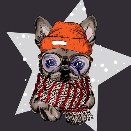 vector portrait of French bulldog dog wearing beanie, glasses and scarf. Isolated on star and snow. Skecthed colored illustraion. Christmas, Xmas, New year. Party decoration, promotion, greeting card.