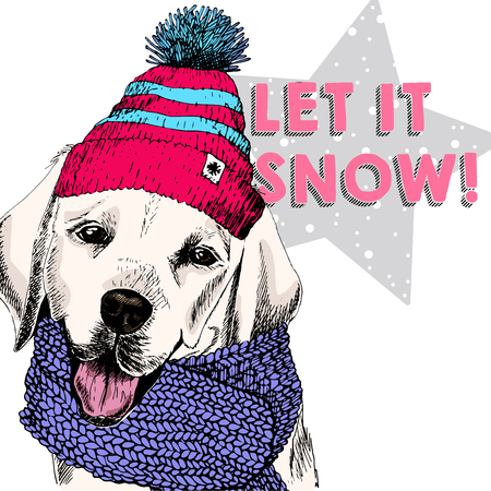 Close up vector portrait of Labrador retriever dog wearing beanie and scarf. Ski mode mood. Skecthed colored illustraion. Christmas, Xmas, New year. Party decoration, promotion, greeting card. Illustration