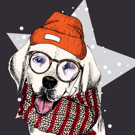 illustraion: vector portrait of labrador retriever dog wearing beanie, glasses and scarf. Isolated on star, snow. Skecthed color illustraion. Christmas, Xmas, New year. Party decoration, promotion, greeting card. Illustration