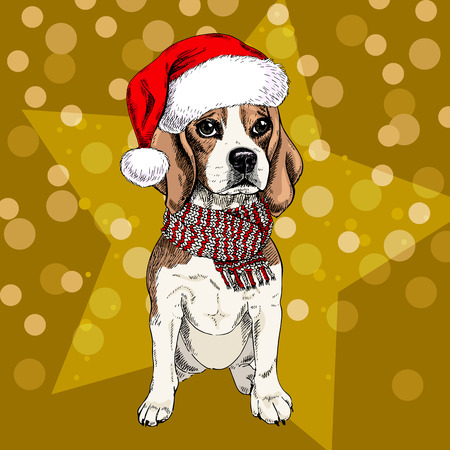 illustraion: Vector portrait of beagle dog wearing santa hat and scarf. Isolated on star and sparklers bokeh. Skecthed color illustraion. Christmas, Xmas, New year. Party decoration, promotion, greeting card.
