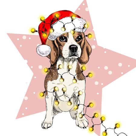 Retrato de vector de perro beagle con sombrero de santa Guirnalda de luces de Navidad. Aislado en estrella y nieve. Skecthed color illustraion. Navidad, Navidad, Año Nuevo. Decoración de fiesta, promoción, tarjeta de felicitación.
